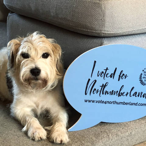 Flo Voted for Northumberland